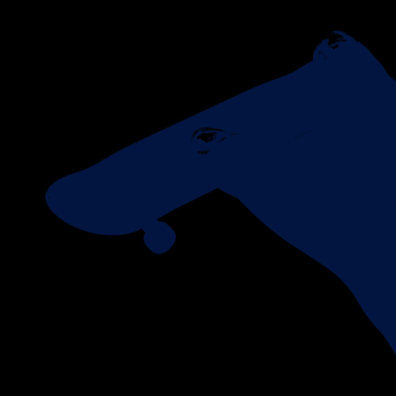 finger-boarding